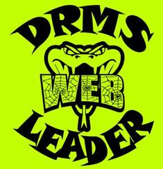 Desert Ridge WEB Leaders